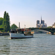 Ile de la Cite and Seine river. Paris — Stock Photo