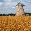 Royalty-Free Stock Photo: Corn field and alone mill in Europe