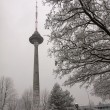 Vilnius television tower — Stock Photo