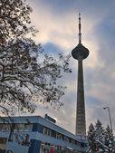 Torre de televisión de vilnius. invierno lituano. 14 de diciembre por la tarde, 2012 — Foto de Stock