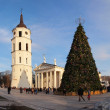 Stock Photo: City Christmas Tree, Vilnius, Lithuania