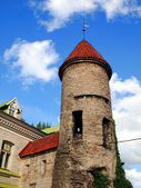 Medieval towers - part of the city wall. Tallinn — Stock Photo