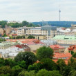 Vilnius Cathedral belfry and old town panorama — Stock Photo