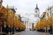 Gediminas Avenue in Vilnius at autumn — Stock Photo