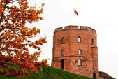 Gediminas castle in Vilnius. Lithuania.  — Foto Stock