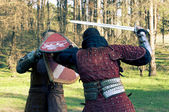 Two knights fighting in the forest — Foto de Stock