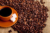 Cup of coffee with refined sugar and coffee beans. — Stock Photo