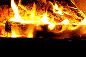 Blaze fire flame texture background — Stock Photo