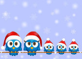 Cute christmas birds — Stock Vector