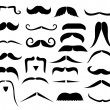 Stock Vector: Set of moustaches