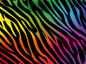 Rainbow zebra background — Stock Vector