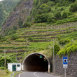 Tunnel of Joao Delgado, Madeira — Stock Photo