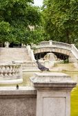 Dijon, fountain Darcy, the sparrow and the pigeon (Burgundy France) — Stock Photo