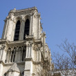 Notre-Dame-de-Paris  Paris France — Stock Photo