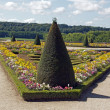 Stock Photo: Garden french-style, Palace of Versailles (France)