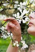 The soft perfume of the spring — Stock Photo