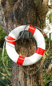 Life preserver collided on a wall, a foresight against the risk of drowning in swimming pool — Stock Photo