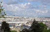 Roofs of Paris between sky and nature (France) — Foto de Stock
