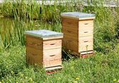 Two hives in a meadow, a house of bees in summer — Stock Photo