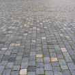 Cobbled pavement — Stock Photo