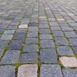 Cobbled pavement backgorund — Stock Photo