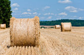 Hay roll — Stock Photo