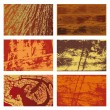 Stock Vector: Wood Textures Set