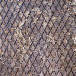 Rusty metal grid — Stock Photo #11564199