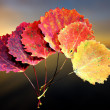 Six autumn aspen leaves — Stock Photo #12761536