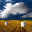 Hay bales on blue sky - Stock Photo