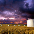 Hay bales on dramatic sky — Stock Photo