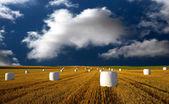 Hooibalen op blauwe hemel — Stockfoto