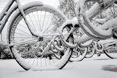 Bikes in rack in winter — Stock Photo