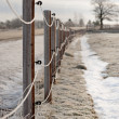 Stock Photo: Fence in winter