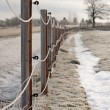 Royalty-Free Stock Photo: Fence in winter