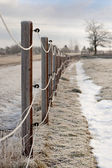 Fence in winter — Stock Photo