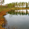 Swedish tarn — Stockfoto