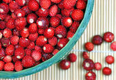 Fresh wild strawberries — Stock Photo
