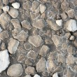 Rocks in dried clay — Stock Photo
