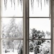 Stock Photo: Winter landscape viewed through window