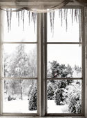 Winter landscape viewed through window — Stock Photo