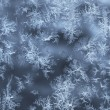 Ice crystals on glass — Stock Photo