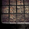 Brick wall viewed through prison window — Stock Photo