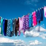 Постер, плакат: Clothes hanging to dry