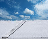 Roof ladder in snow — Stock Photo