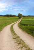 Winding dirt road in summer — Stock Photo
