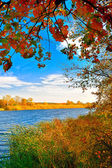 Autumn at the lake — Stock Photo