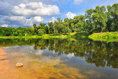 Summer day on the banks of a beautiful river — Stock Photo