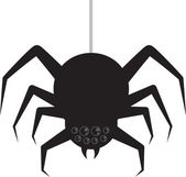 Spider Hanging — Stock Vector
