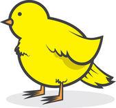 Canarias pájaro gordinflón — Vector de stock